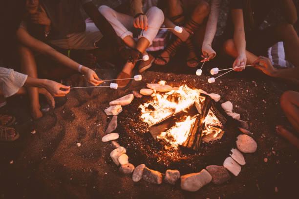 young multi-ethnic friends roasting marshmallows over campfire at beach party - falò spiaggia foto e immagini stock