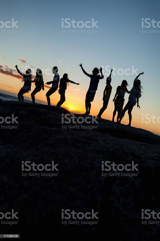 Young Party People Dancing On A Rock royalty-free stock photo