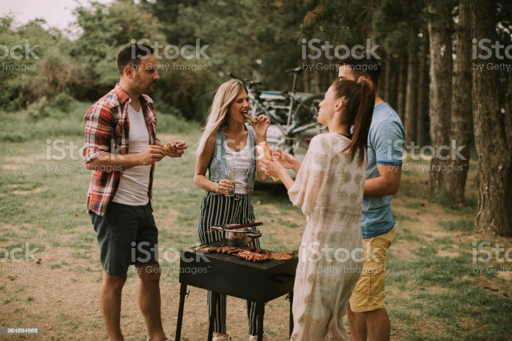 Young people enjoying barbecue party in the nature royalty-free stock photo