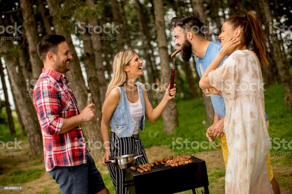 在大自然中享受燒烤派對的年輕人 - 免版稅一起圖庫照片