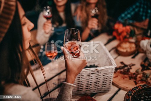 Young people enjoying wine