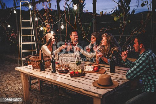 Young people enjoying wine
