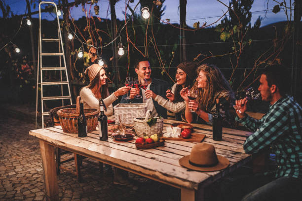 Young people enjoying wine Young people enjoying wine family bbq stock pictures, royalty-free photos & images