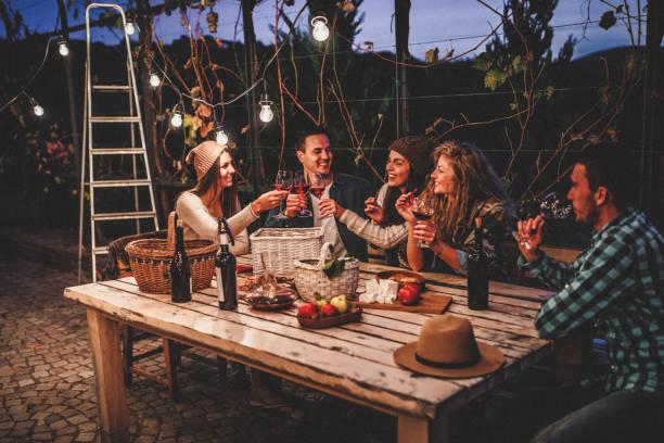 młodzi ludzie cieszący się winem - kolacja spotkanie towarzyskie zdjęcia i obrazy z banku zdjęć