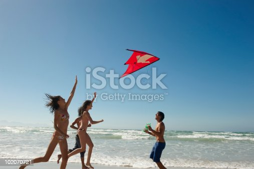 453383283 istock photo Young people flying kite on beach 102070721