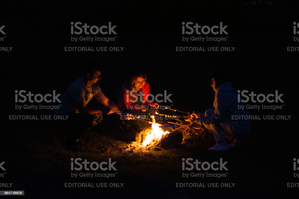 young people, fry marshmallow at the stake in the dead of night. Friends, boyfriend and two girls royalty-free stock photo