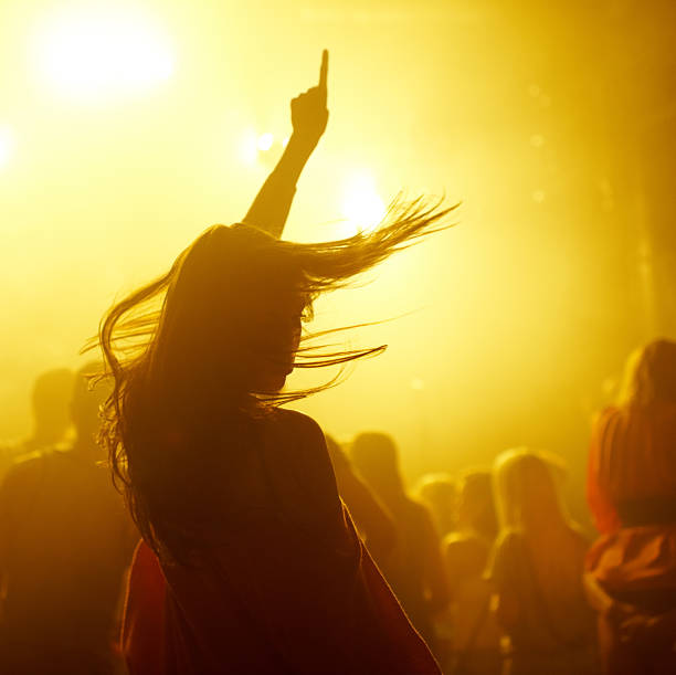 making the crowd go wild - popular music concert stock photos and pictures