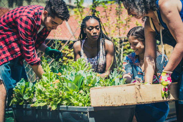 Young people learning urban gardening