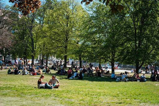 Young people on meadow in park on a sunny, summer day in Berlin