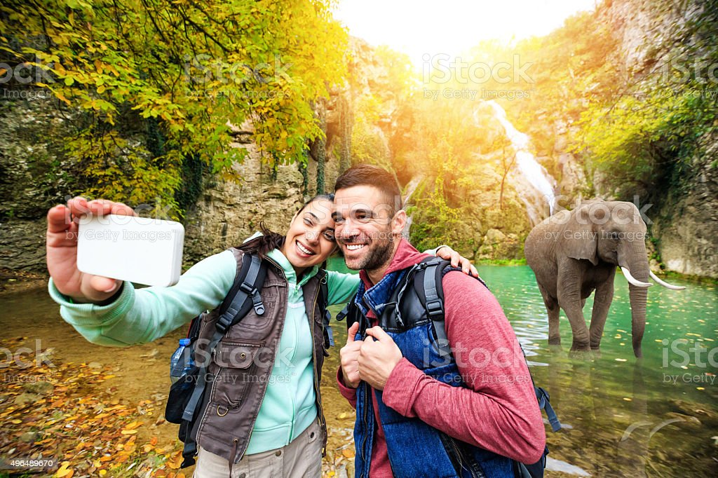 Young people take selfie with elephant stock photo