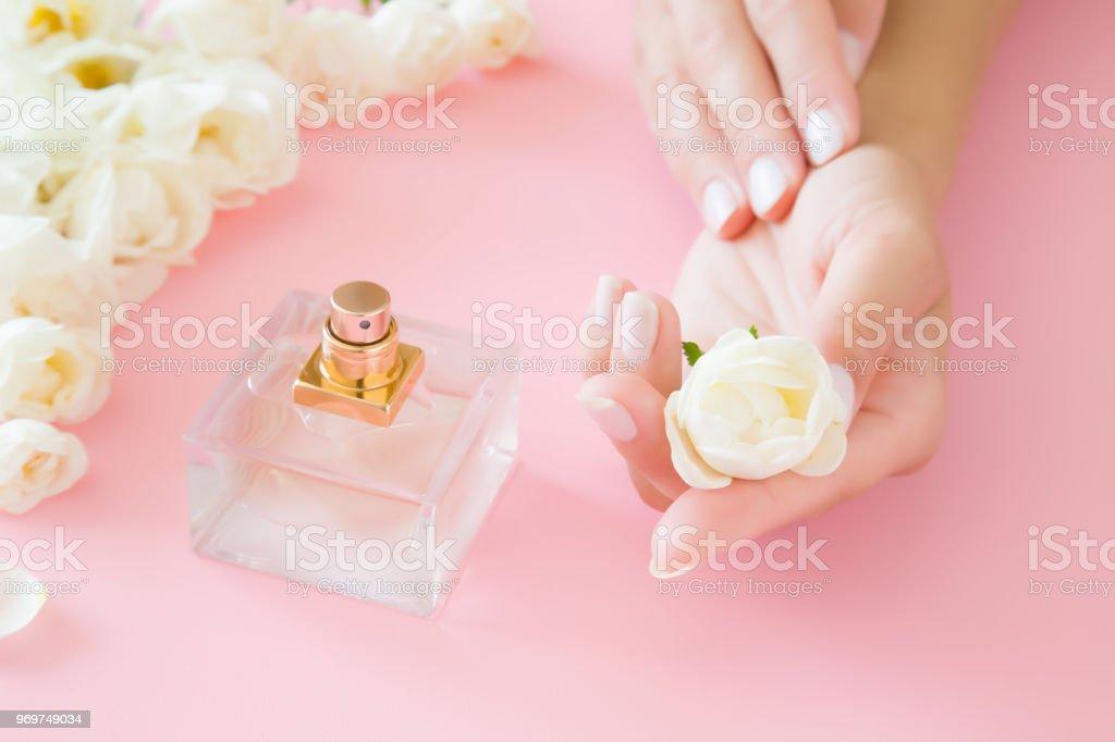 Young Parfait Soigne Des Mains De Femme Tenant Un Blanc Rose