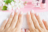 Young, perfect, groomed woman's hands on the white towel. Nails care. Manicure, pedicure beauty salon concept. Beautiful branches of apple blossoms on pastel pink table. Fresh flowers.
