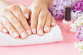 Young, perfect, groomed woman's hands on white towel. Nail varnishing in light pink color. Nails care. Manicure, pedicure beauty salon. Beautiful branches of lilac blossoms. Colorful, fresh flowers.