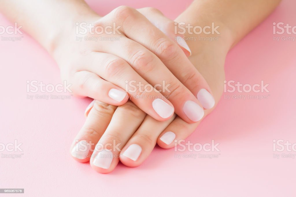 Young, perfect woman's hands with light nails on pastel pink table. Care about clean, soft and smooth skin. Manicure, pedicure beauty salon. royalty-free stock photo