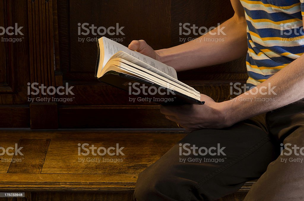 Young Person Reading the Bible royalty-free stock photo