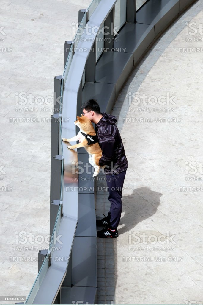 A young person walks his dog in a public park.