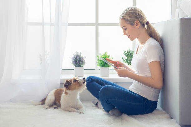 Young person with dog at home leisure stock photo