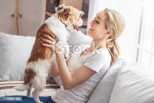 Young woman with dog at home sitting on the sofa