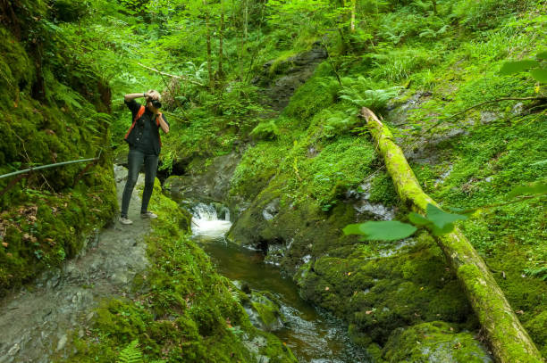 Young photographer in the Lydford Gorge Natural Reserve, Devon, UK stock photo