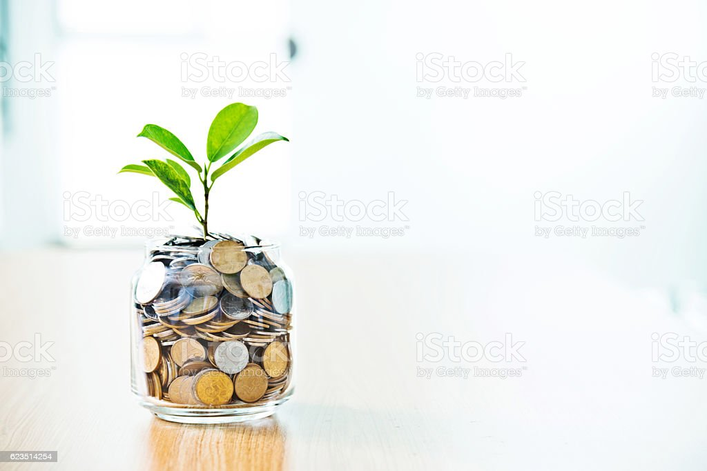 Young plant growing from coin jar Lizenzfreies stock-foto