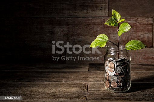This is a photograph of green leaves coming out of the mdiddle of a coin jar to symbolize growth in savings and retirement.