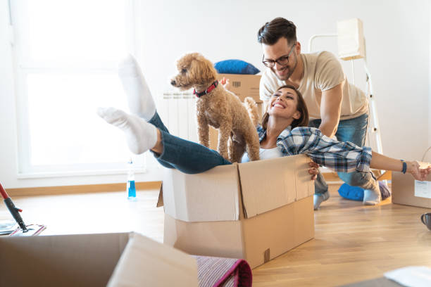 young playful couple at their new apartment - stock image - physical activity stock pictures, royalty-free photos & images