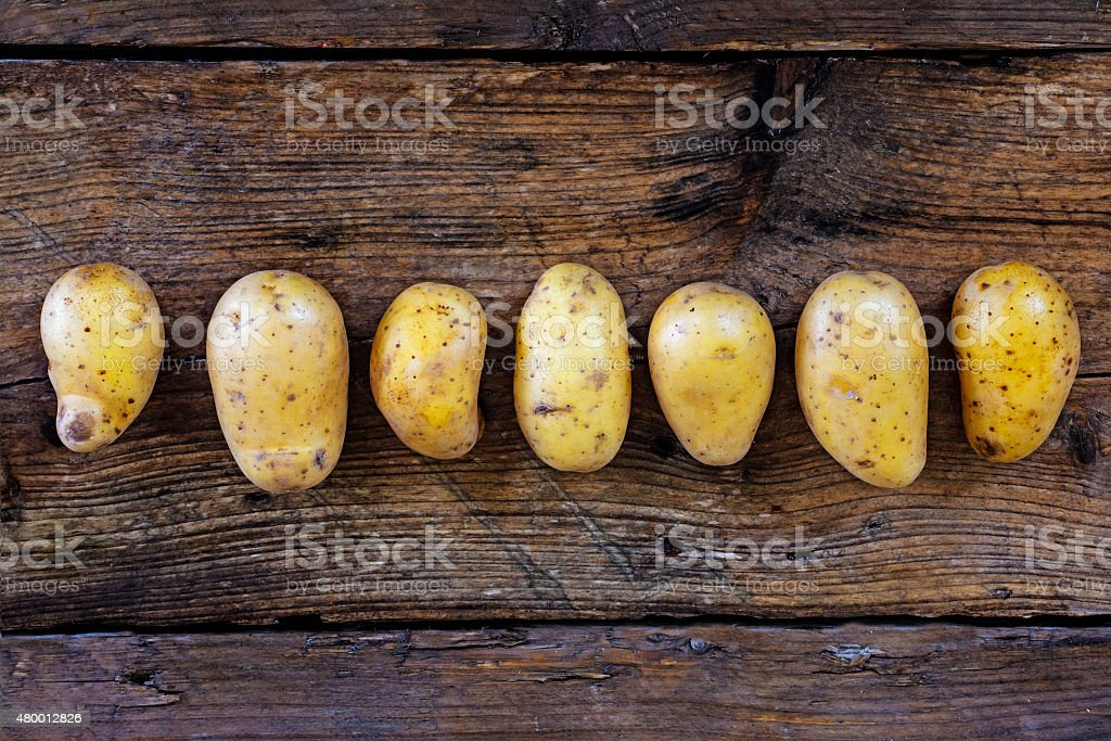 Young potatoes in a row on a dark rustic wooden stock photo