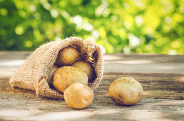 Young potatoes in a sack on a wooden table stock photo