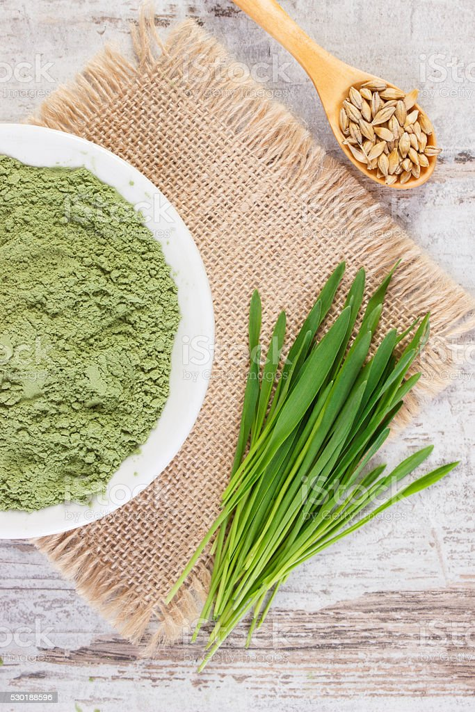 Young powder barley, barley grass and grain on jute canvas stock photo