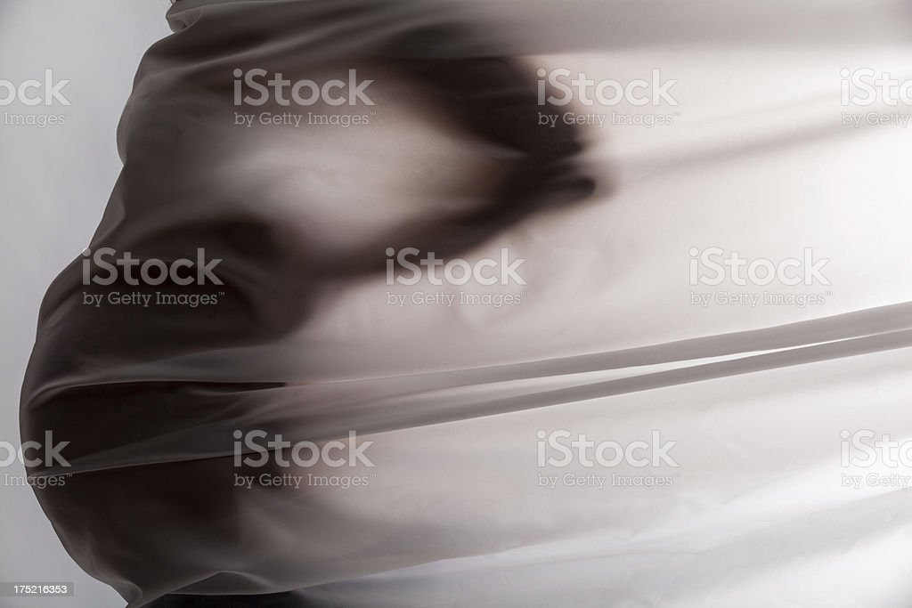 Young pregnant woman royalty-free stock photo