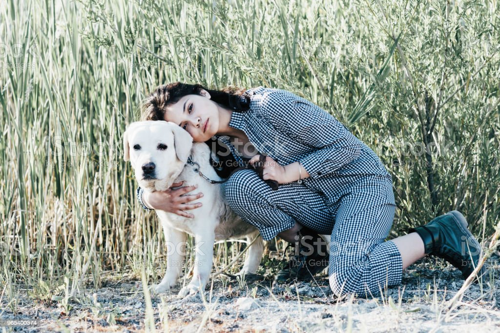 Young pretty girl hugs her dog against a background of green grass zbiór zdjęć royalty-free