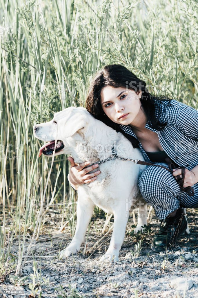 Young pretty girl hugs her dog against a background of green grass royalty-free stock photo