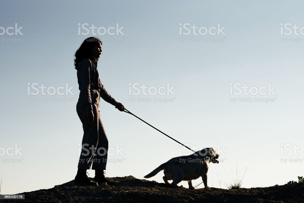 모래 구 덩이에 개 산책 젊은 예쁜 여자 - 로열티 프리 개 스톡 사진