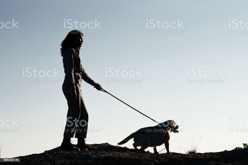 Young pretty girl walking a dog against a sandy pit zbiór zdjęć royalty-free