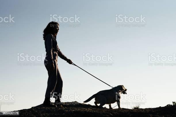 Młoda Ładna Dziewczyna Spaceru Psa Przed Piaszczystym Dole - zdjęcia stockowe i więcej obrazów Część ciała zwierzęcia