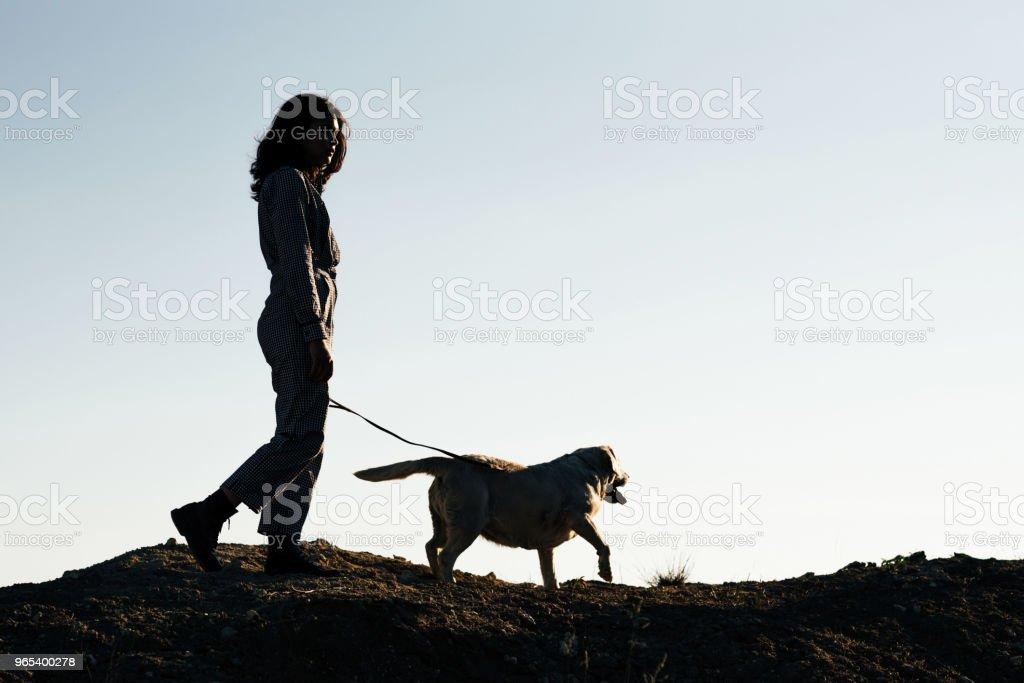 Jovem menina bonita passeando com um cachorro contra um poço de areia - Foto de stock de Amizade royalty-free
