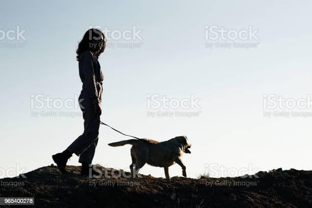 Foto de Jovem Menina Bonita Passeando Com Um Cachorro Contra Um Poço De Areia e mais fotos de stock de Amizade