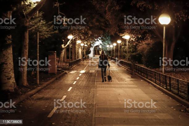 Young pretty girl walking the dog at night in winter picture id1130738925?b=1&k=6&m=1130738925&s=612x612&h=gkzo 2okyqf9y1grwcjyfyzq81aynkmmdk958qnatpu=