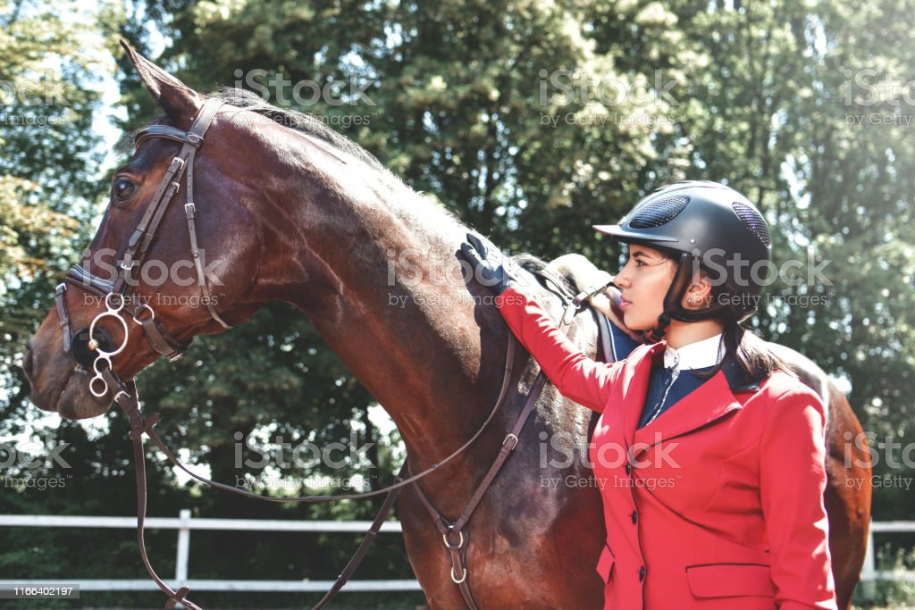 A young girl talking and takes care of her horse. She loves the...