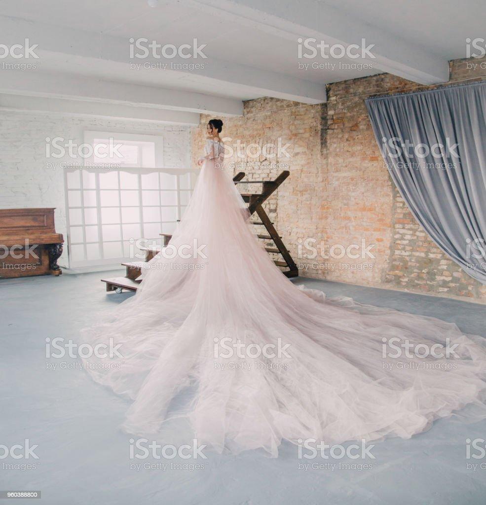eine junge prinzessin in eine teure luxuriöse kleid mit langer schleppe  steht mit dem rücken zur kamera vor dem hintergrund eines jahrgangs hohe