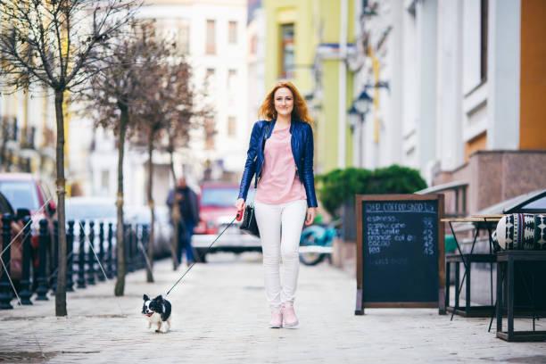 junge rothaarige frau kaukasischen entlang der europäischen straße mit kleiner chihuahua rasse hund von zwei farben an der leine. bewölkt, warmen herbst frühlingswetter. mädchen, gekleidet in leder jacke und rosa schuhe - leinenhosen frauen stock-fotos und bilder