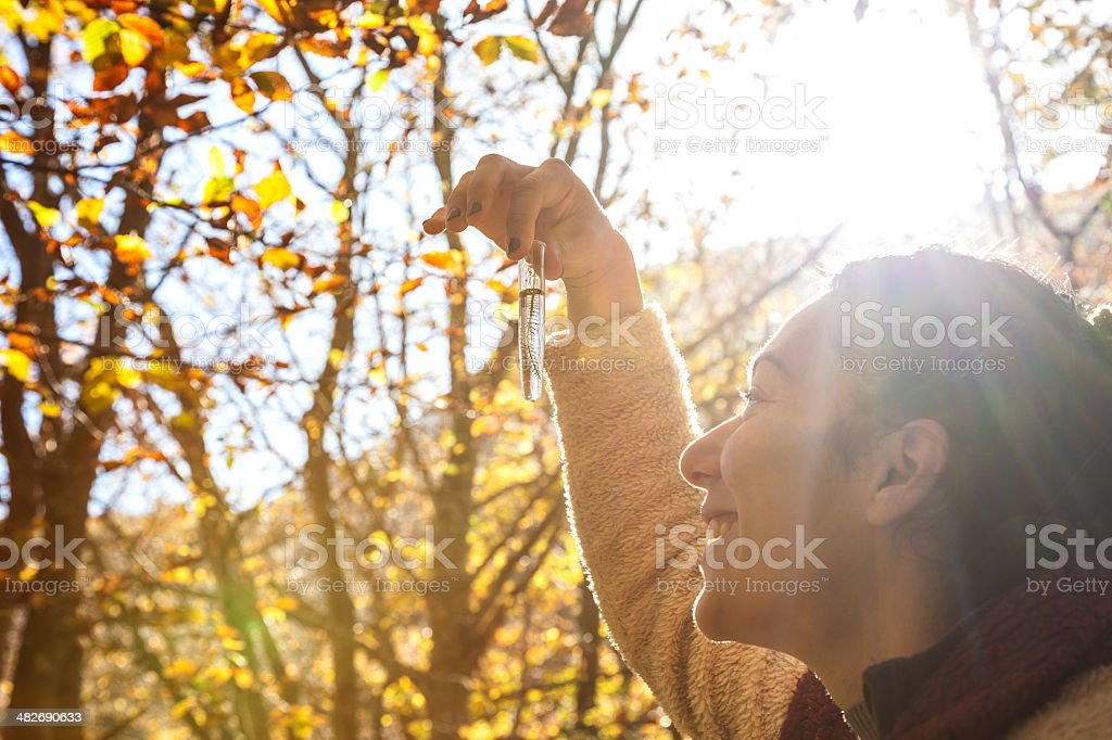 Young researcher woman in the forest royalty-free stock photo