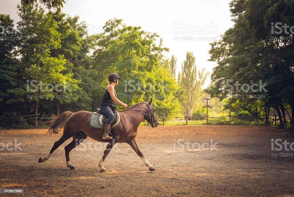 Young rider and horse train before a competition. Horse riding stock photo