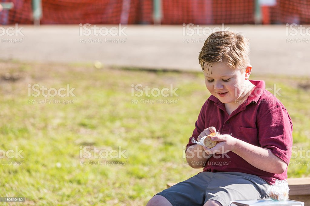Young School Boy Outdoors Eating Lunch in the Sunshine stock photo