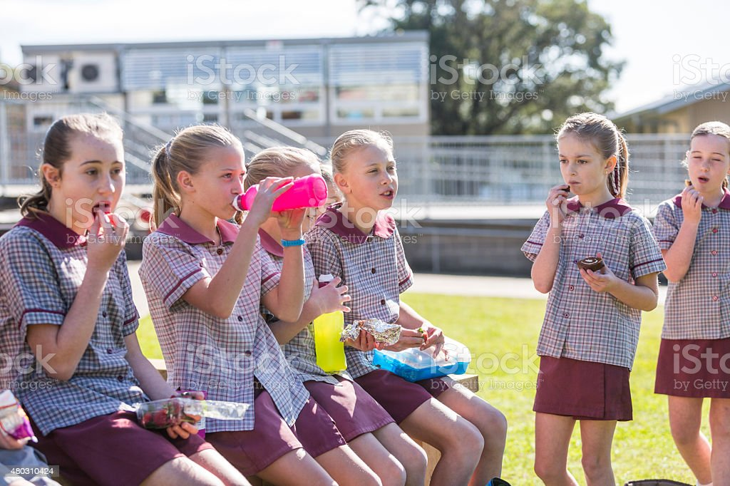 Young School Children Outdoors Eating Healthy Lunch in the Sunshine stock photo