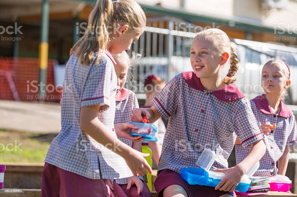Young School Children Outdoors Sharing Healthy Lunch in the Sunshine stock photo