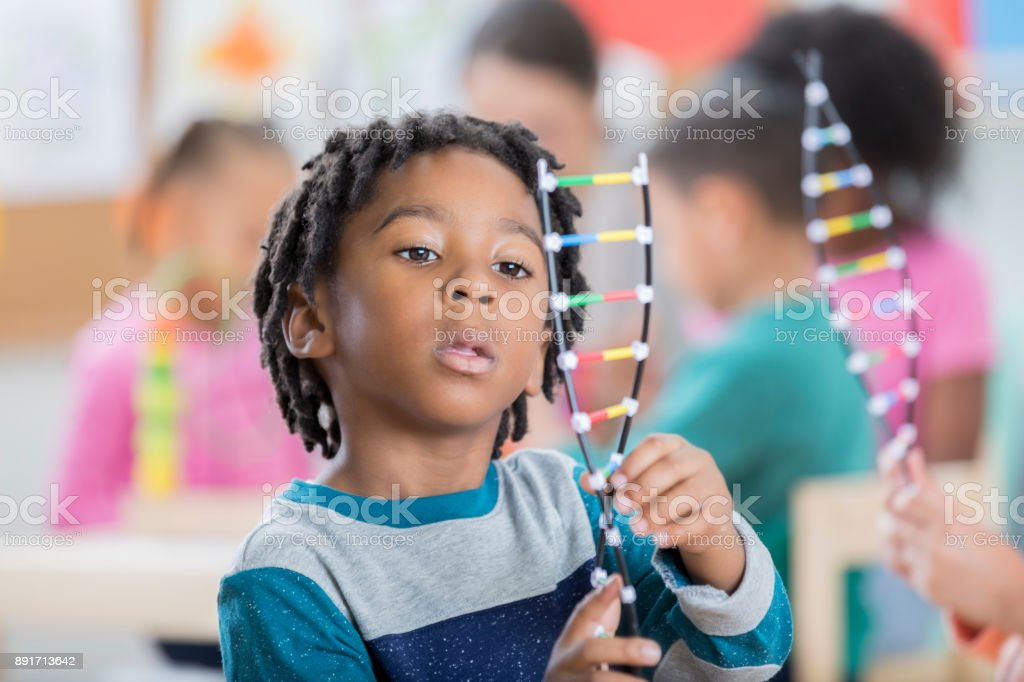 Young schoolboy studies DNA model stock photo