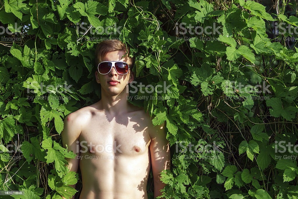 Young shirtless male in the green leafs royalty-free stock photo