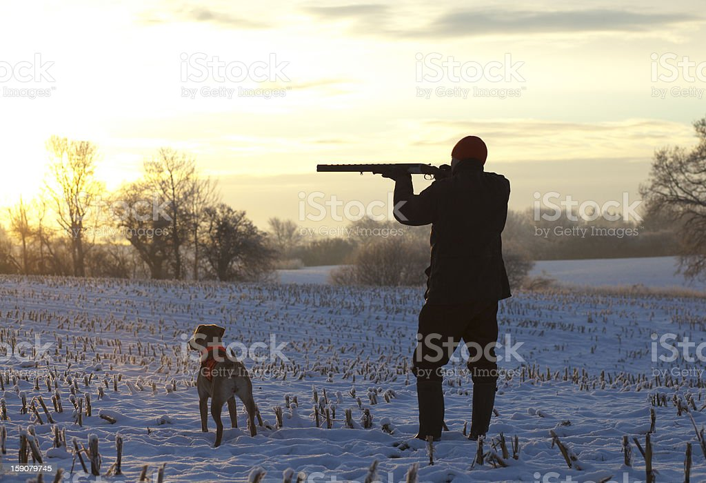 A young shooter and his dog hunting at sunset stock photo