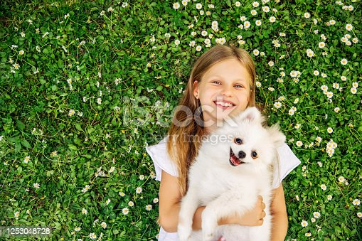 Young smile girl plays with a puppy on the grass